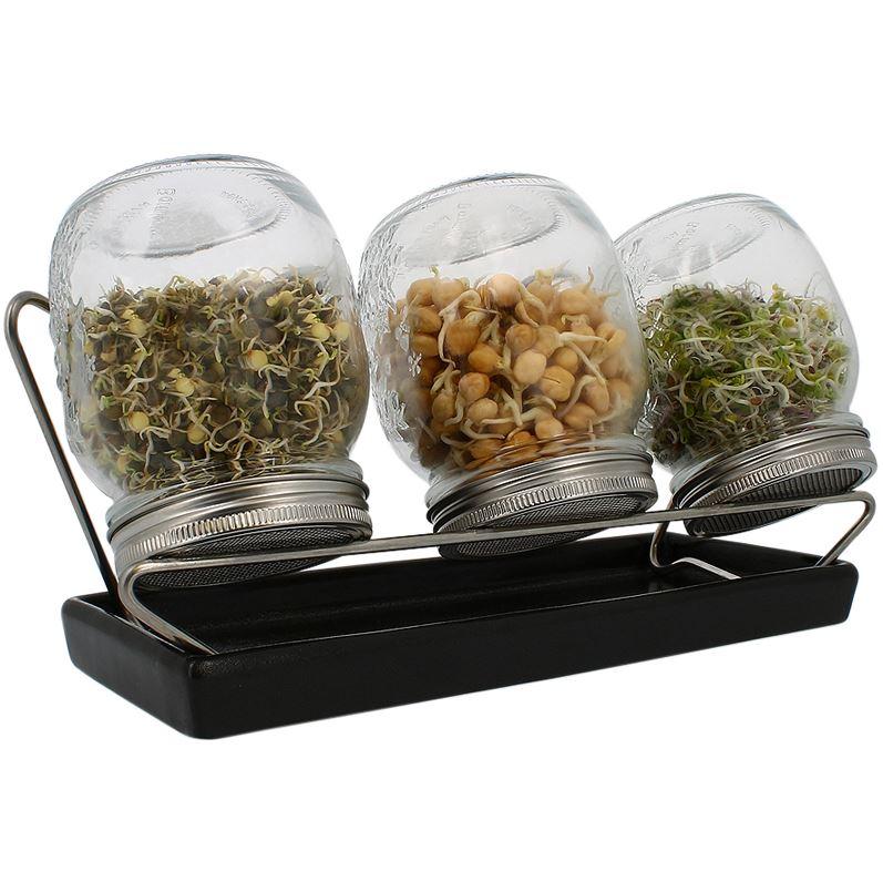 Eschenfelder Sprossen, -Keimglas Systeme mit feinmaschigem Sieb und Schale in verschiedenen Ausführungen und Farben erhältlich